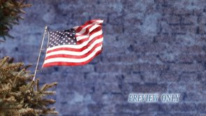 American Flag and Evergreen Branches