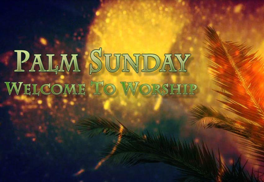 Palm Sunday Welcome To Worship Loop | Videos2Worship
