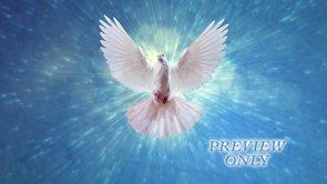 Dove In Flight Worship Background Loop