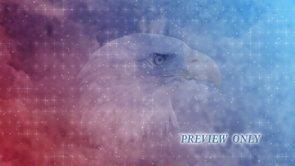 Bald Eagle: Fourth Of July