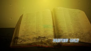 Living Word: Bible And Water Drops