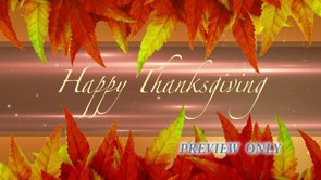 Happy Thanksgiving Looping Motion