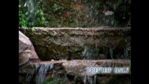 Water On Steps Nature Video Loop