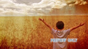Child With Raised Hands In A Wheat Field