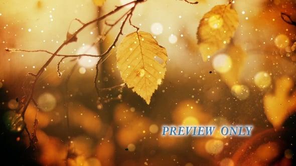 Rugged Autumn Worship Background