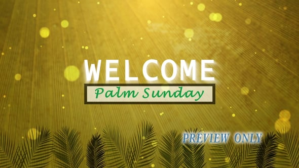 Welcome Background: Palm Sunay