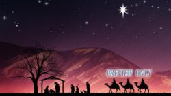 Christmas Advent: Nativity Scene