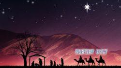 Christmas Advent: Nativity Scene