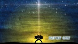 Miracle At Night: Baby In Manger