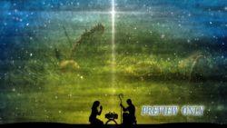 Christmas Nativity: Evergreen Branch