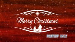 Merry Christmas Red Textured Title