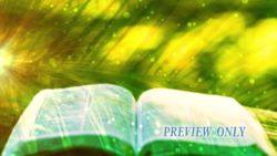 Palm Sunday Open Bible Motion