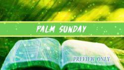 Palm Sunday Title Background