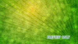 Palm Sunday Green Tree Leaf