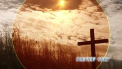 Wooden Cross And Tall Grass